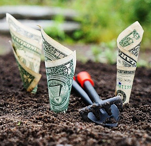 What Is Primerica Financial Services - growing money