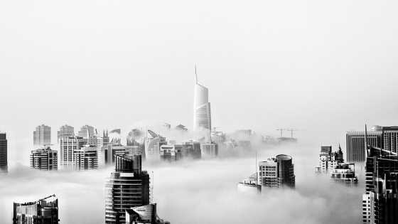 What is Online Business - buildings in fog