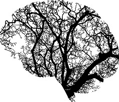 what is the meaning of procrastination - the brain is like a tree