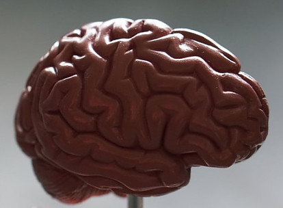 What Is Brain Power?